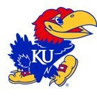 university-of-kansas-jayhawk